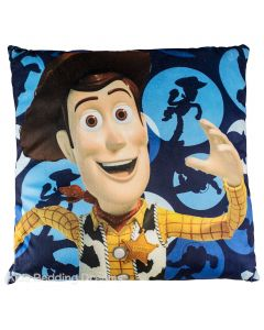Buzz and Woody Cushion